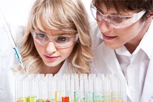 Химики изучают образцы
