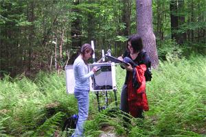 Девушки делают замеры в лесу