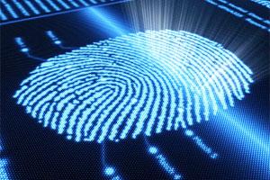 Анализ отпечатка пальца
