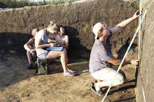 Специалист проводит замер почвы