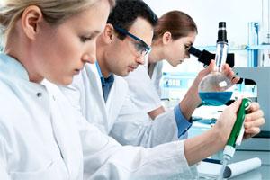 Группа биологов работает