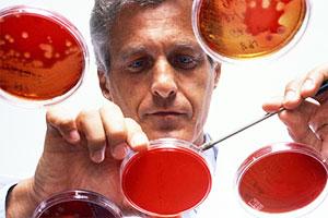 Биолог работает с клетками